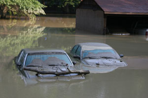 Flood Damaged Cars